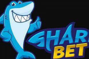 سایت SharkBet