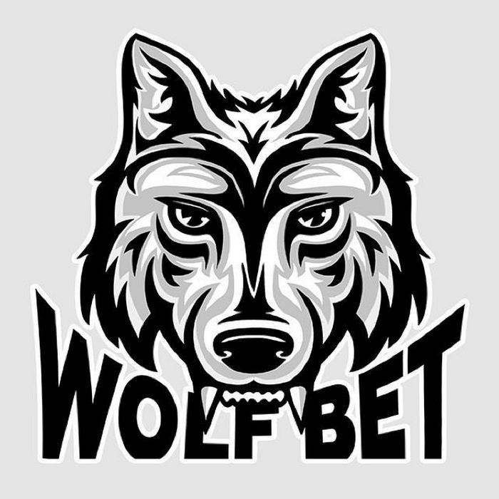 wolfbet میلاد حاتمی