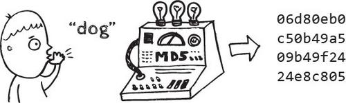 کد md5
